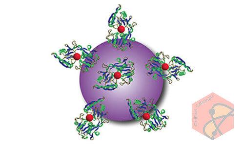 استفاده از نانوذرات برای نوردرمانی تومور سرطان