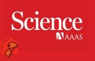 نشریه آمریکایی ساینس نشست همکاری علمی با ایران در پساتحریم برگزار می کند