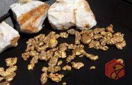 استفاده از باکتری برای فرآوری طلا
