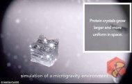 تولید آنزیم های کریستالی در فضا برای مبارزه با اثرات سلاح های شیمیایی