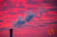 جمعآوری و جداسازی کربن از هوا با درختهای رباتیک DAC